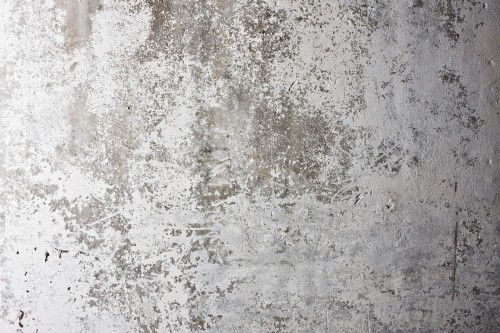 White Grunge Wall Background