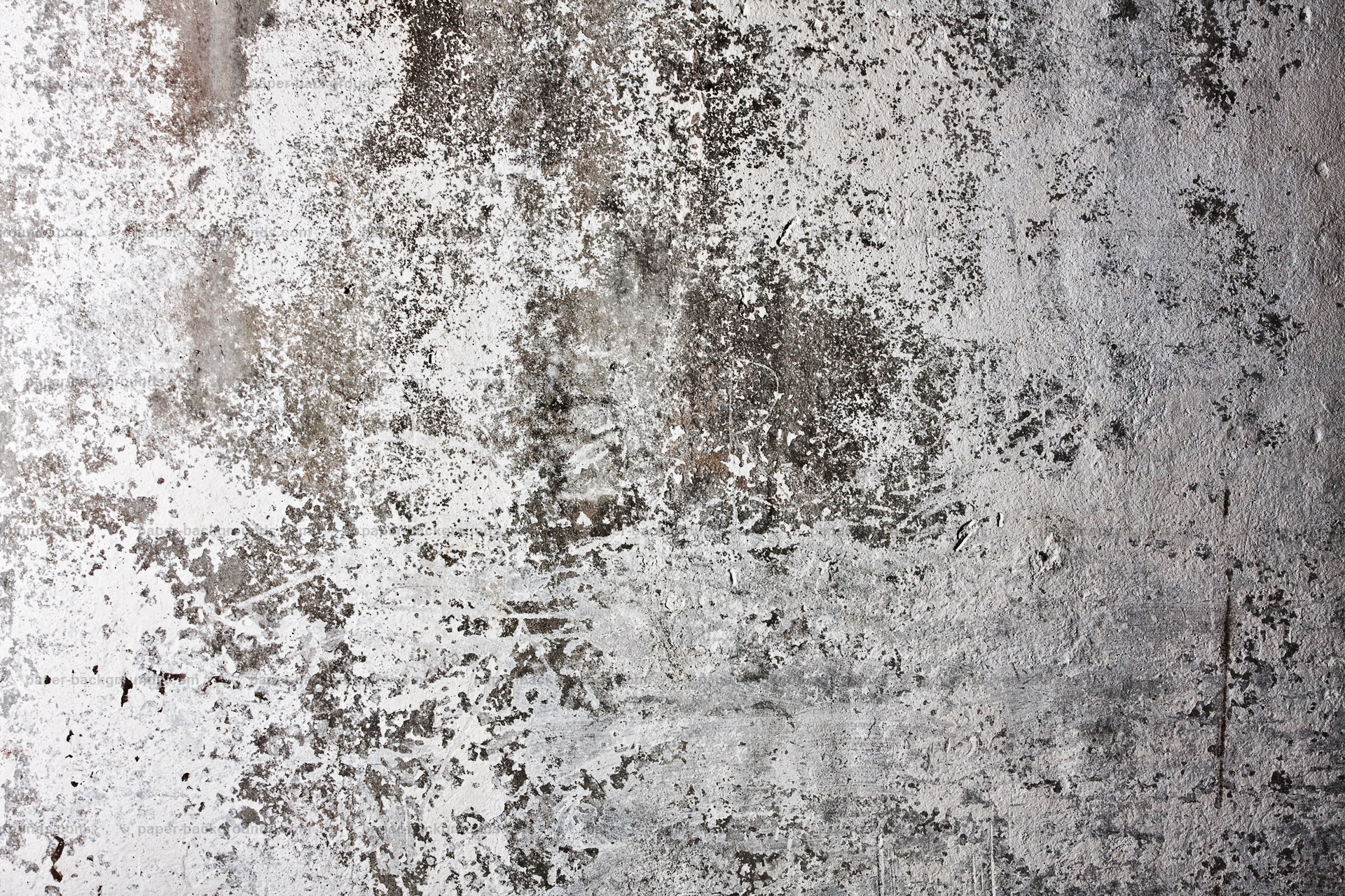 White Grunge Wall Texture HD