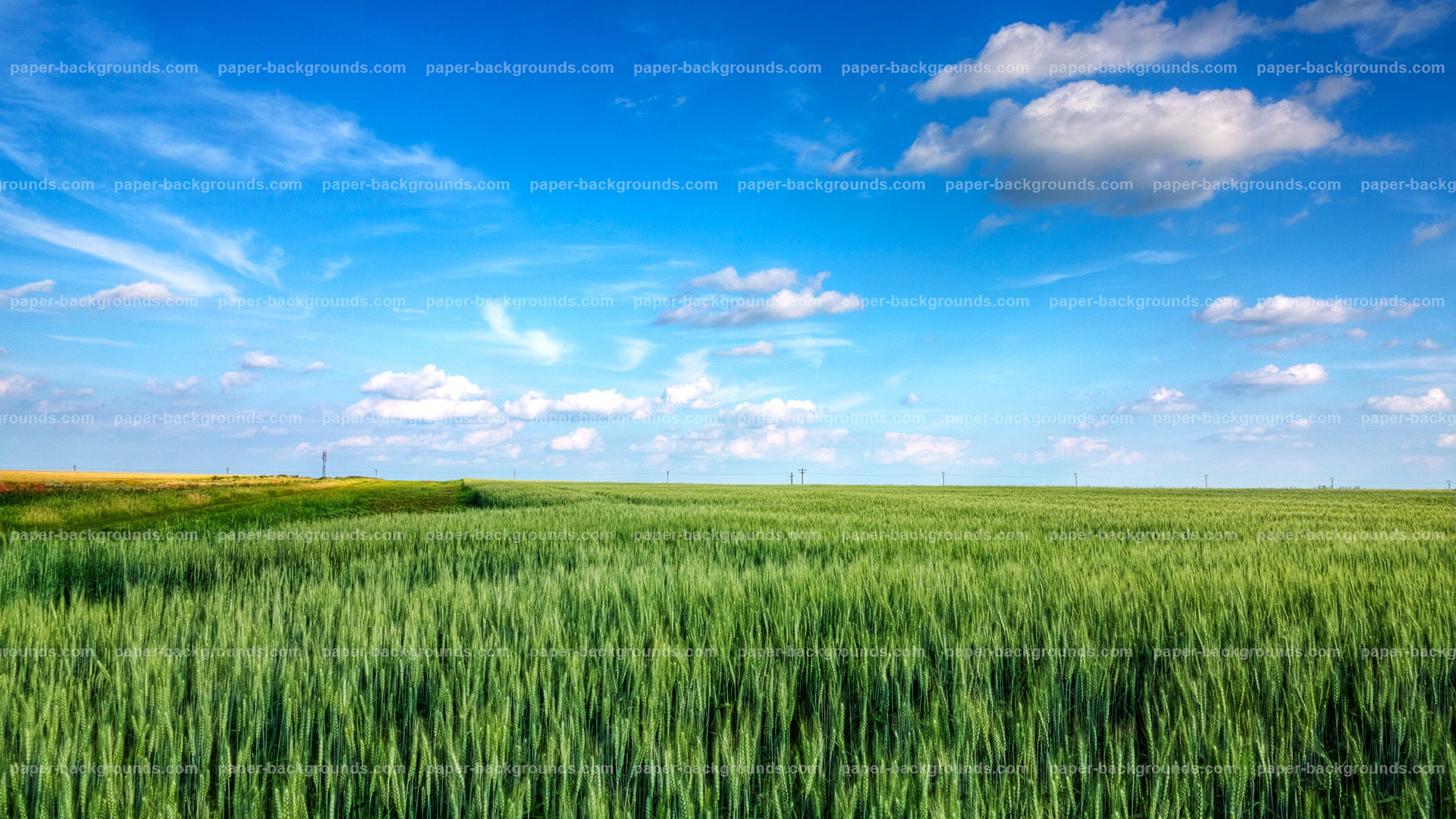 Blue Sky Clouds Green Field Background HD