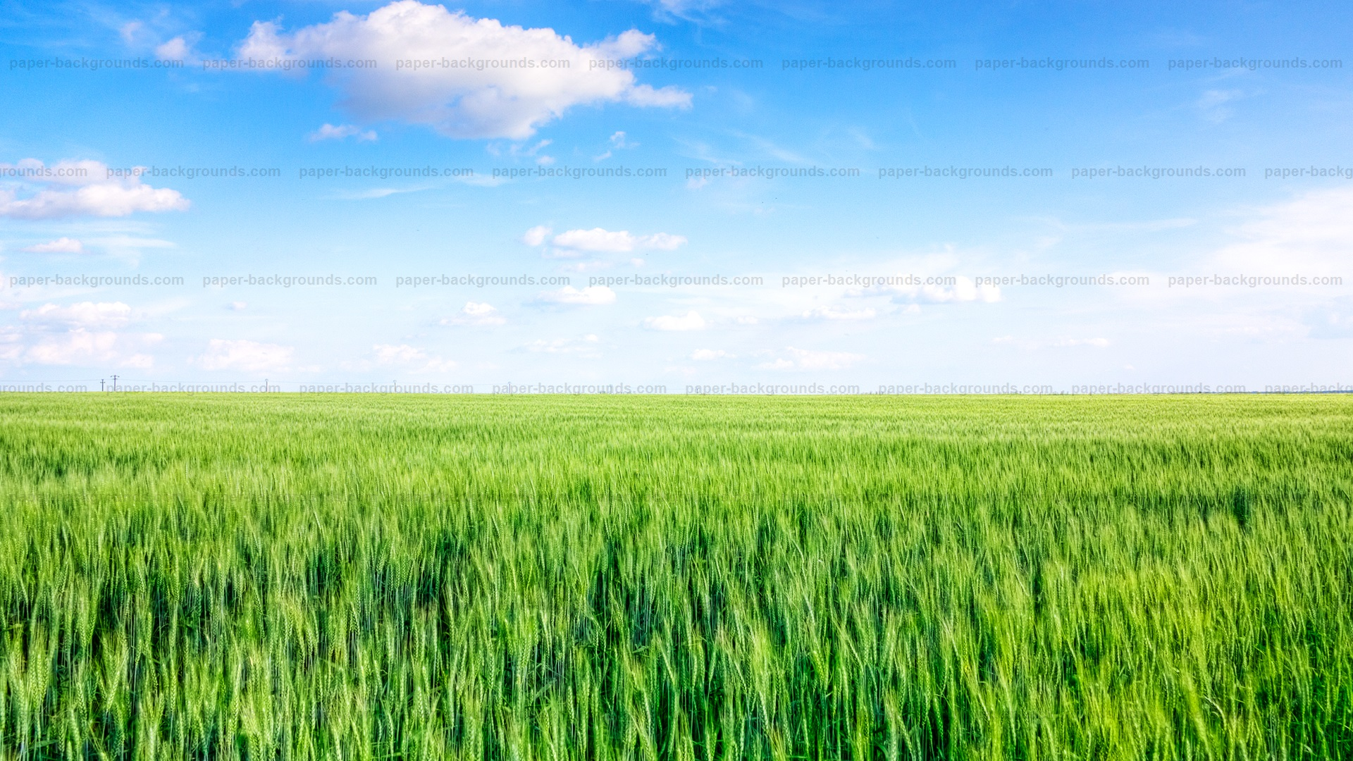 Green Field Blue Sky Background HD
