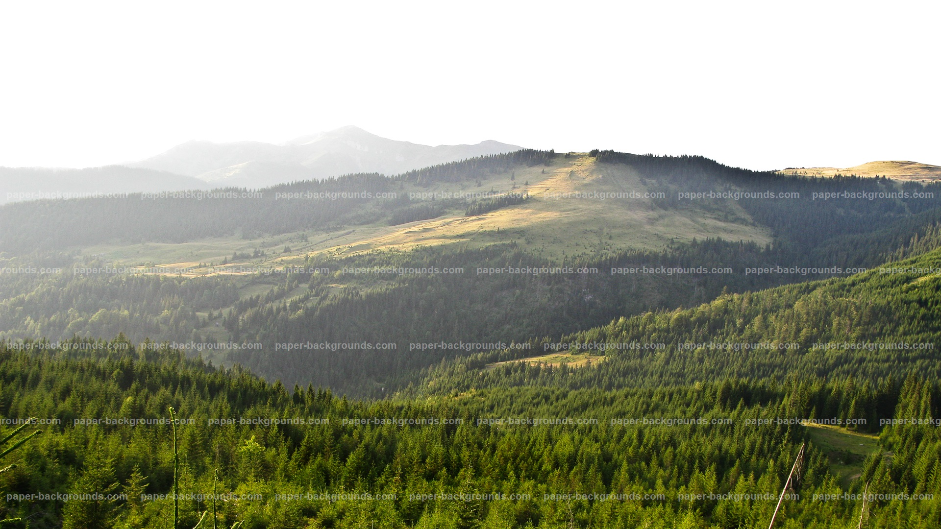 Green Mountain Landscape Background
