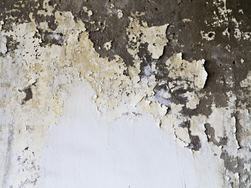 Grunge White Painted Wall