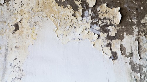 Grunge White Painted Wall HD