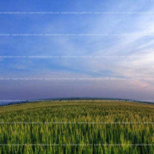 Round Green Field With Blue Sky