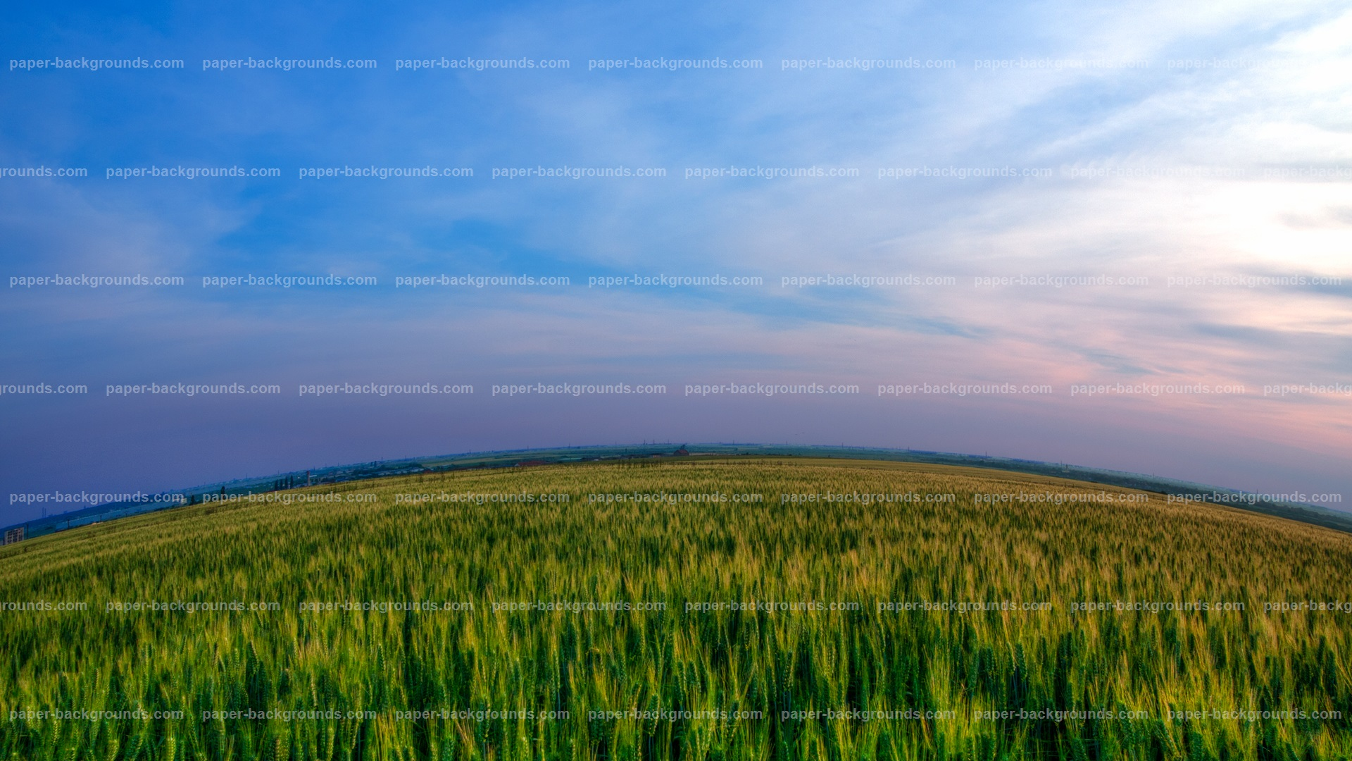 Round Green Field With Blue Sky HD