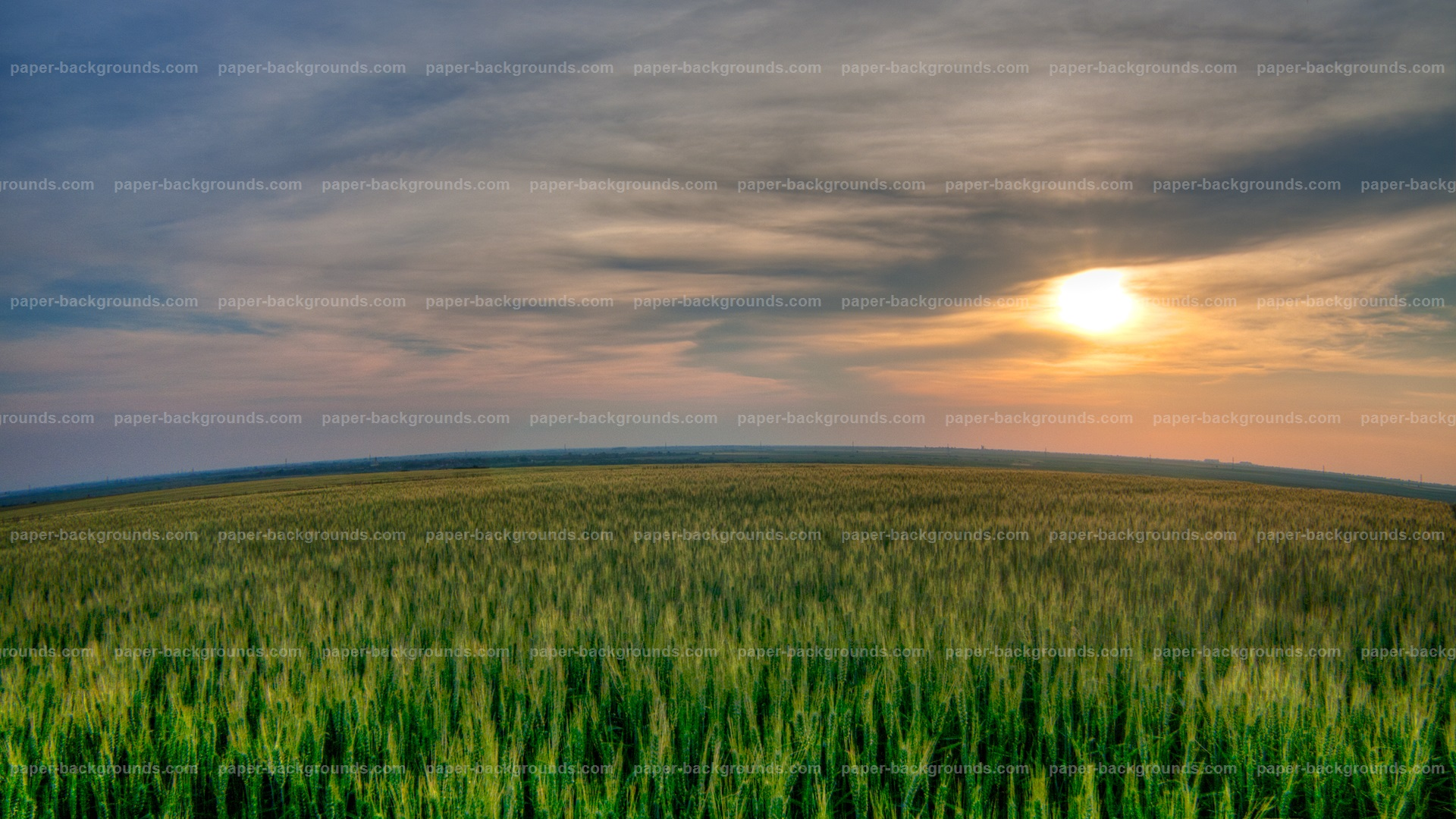 Sunet Sky Green Field Background HD