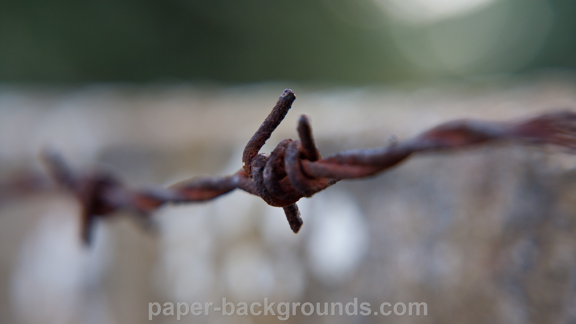 Rusty Barbed Wire Close-up Macro HD