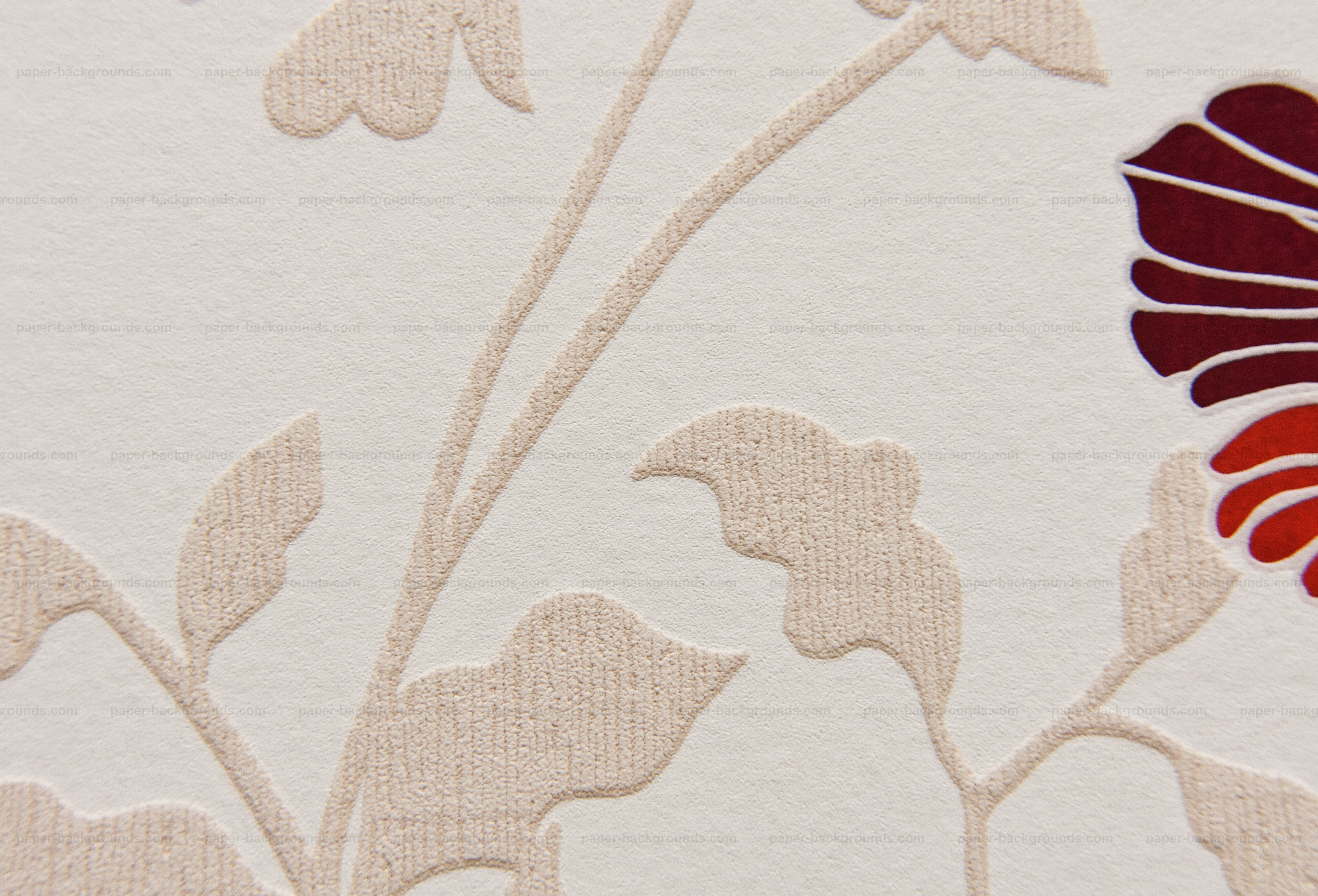 Paper Backgrounds Abstract White Wall Texture Floral Design High - Texture design on wall