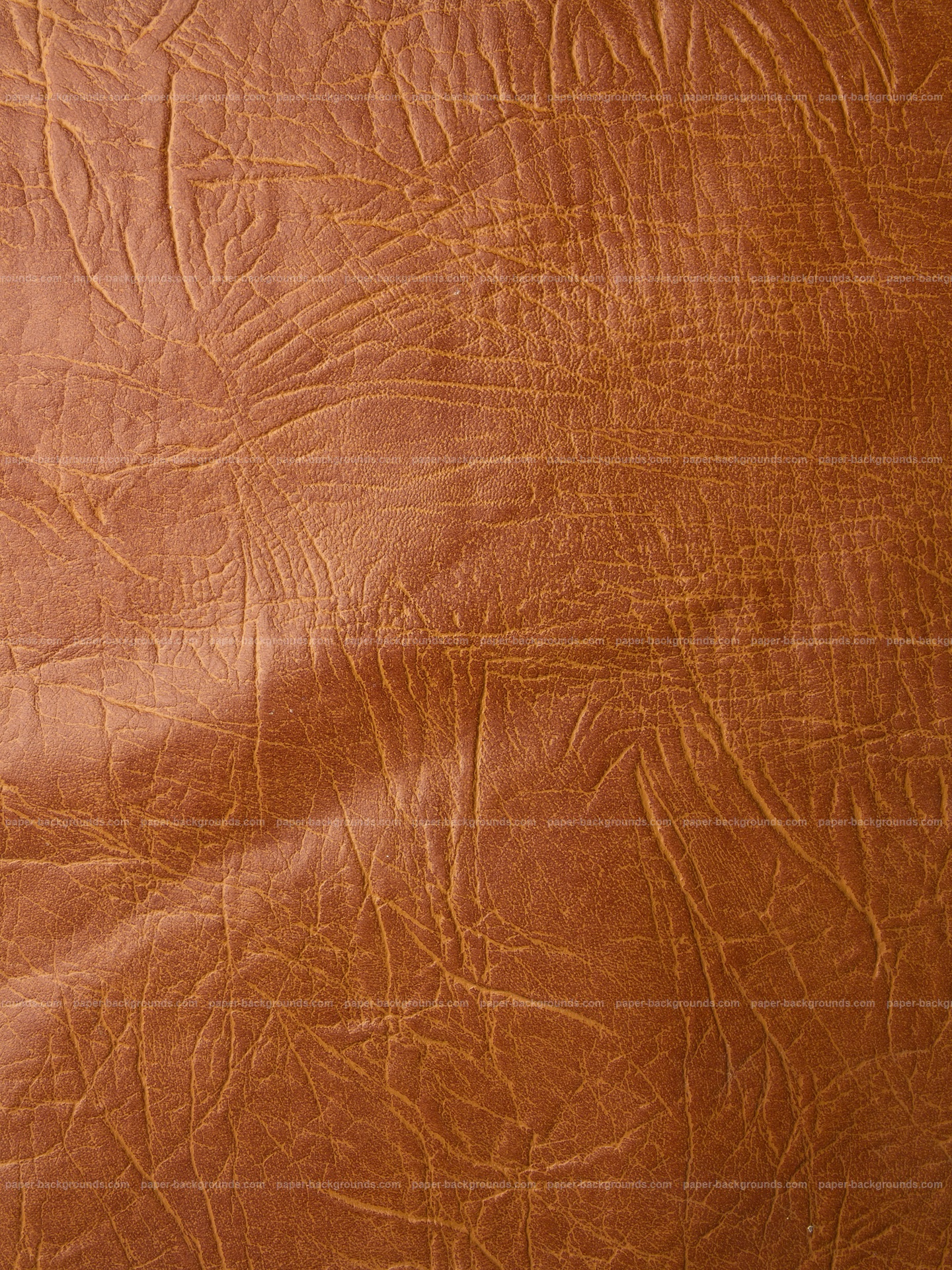 Brown Embossed Leather Texture HD