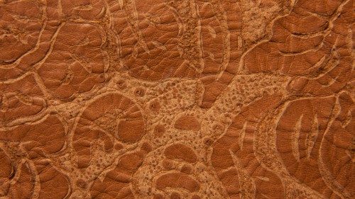 Brown Grunge Embossed Leather Texture HD