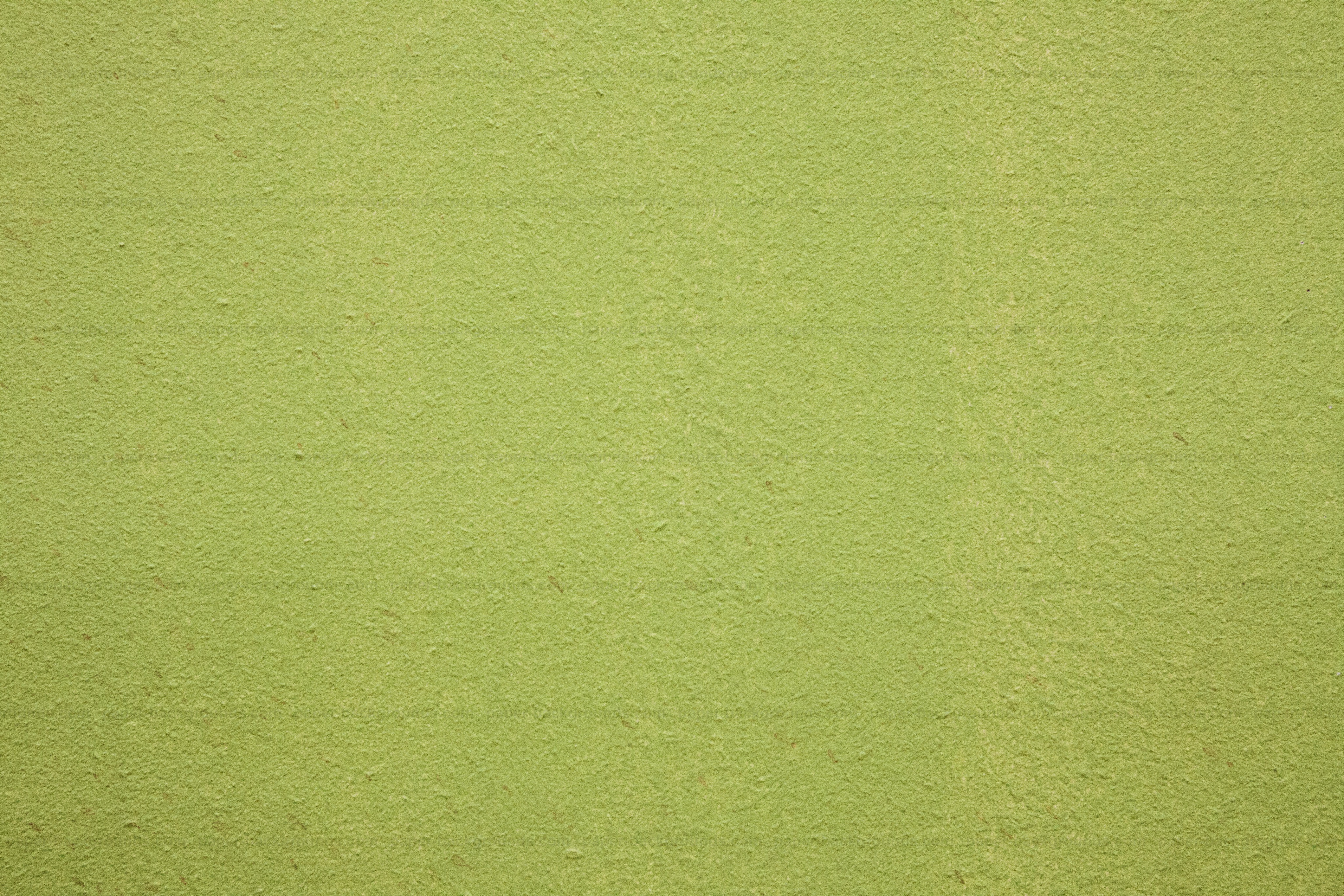 artistic and simple green painted wall placement homes