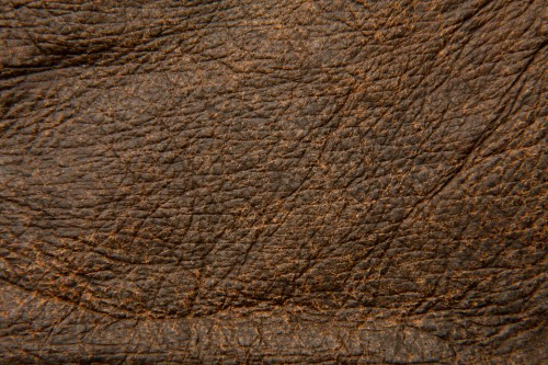 Rough Dark Brown Leather Texture High Resolution