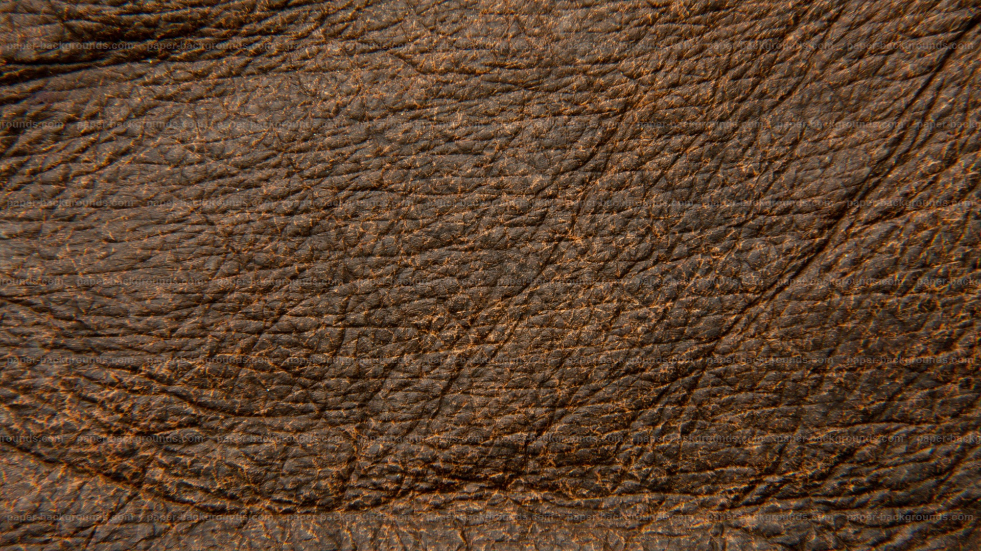 Rough Dark Brown Leather Texture HD