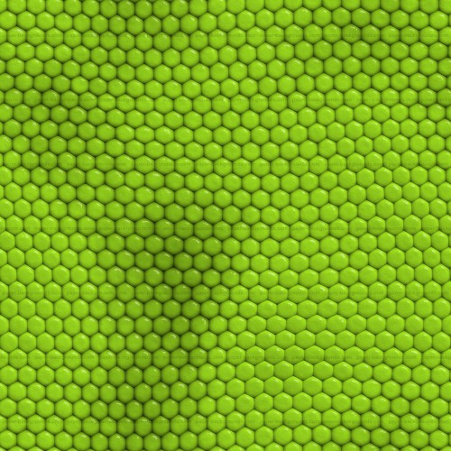 Seamless Green Iguana Reptile Skin Texture High Resolution