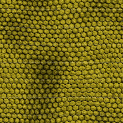 Seamless Green Rough Reptile Skin Texture High Resolution