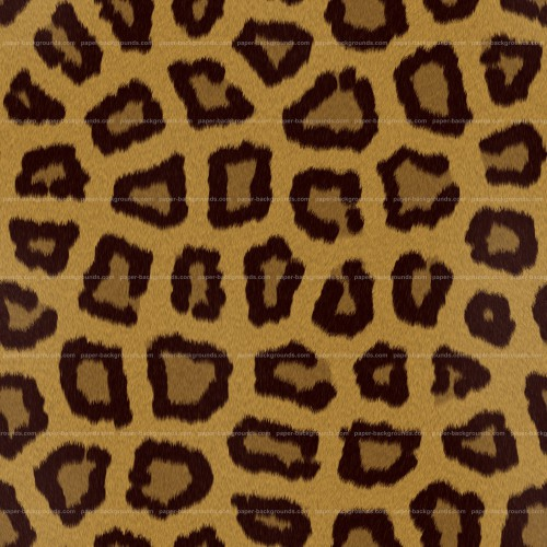 Seamless Leopard Animal Fur Spots Texture High Resolution
