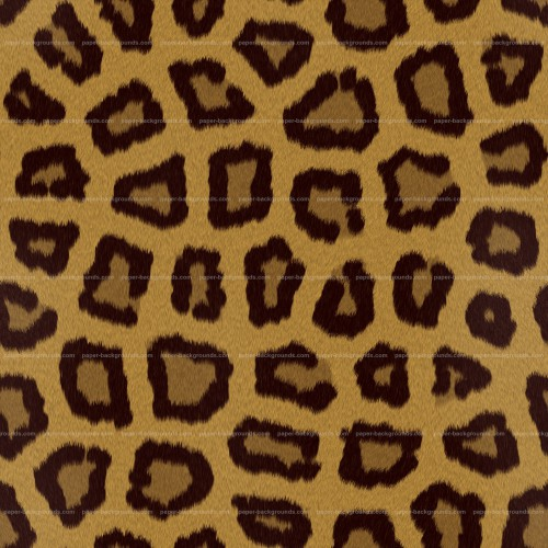 Seamless Leopard Animal Fur Spots Texture HD