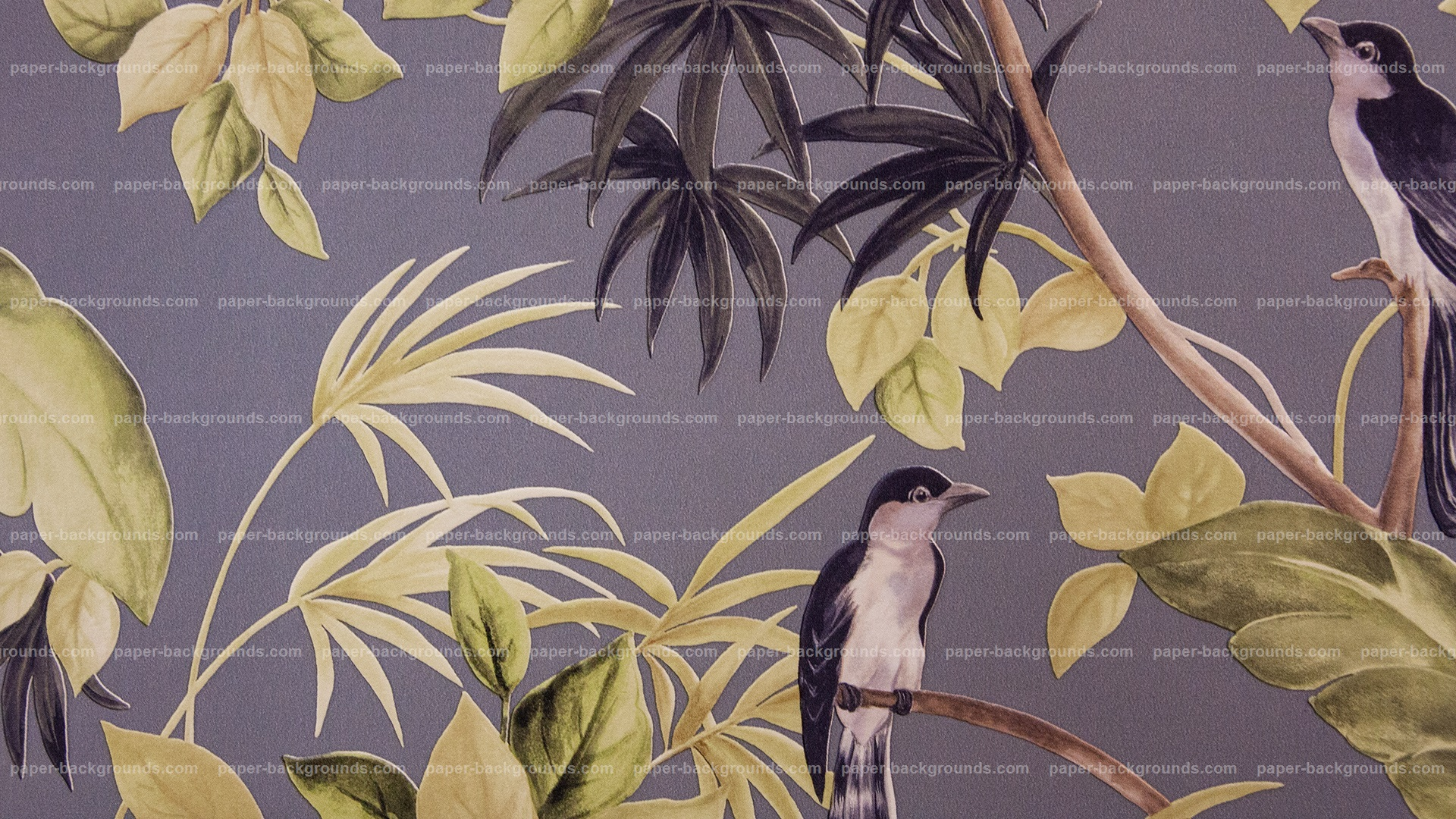Trees With Birds Carpet Background HD