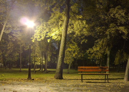 Bench In Park At Night With Light, High Resolution