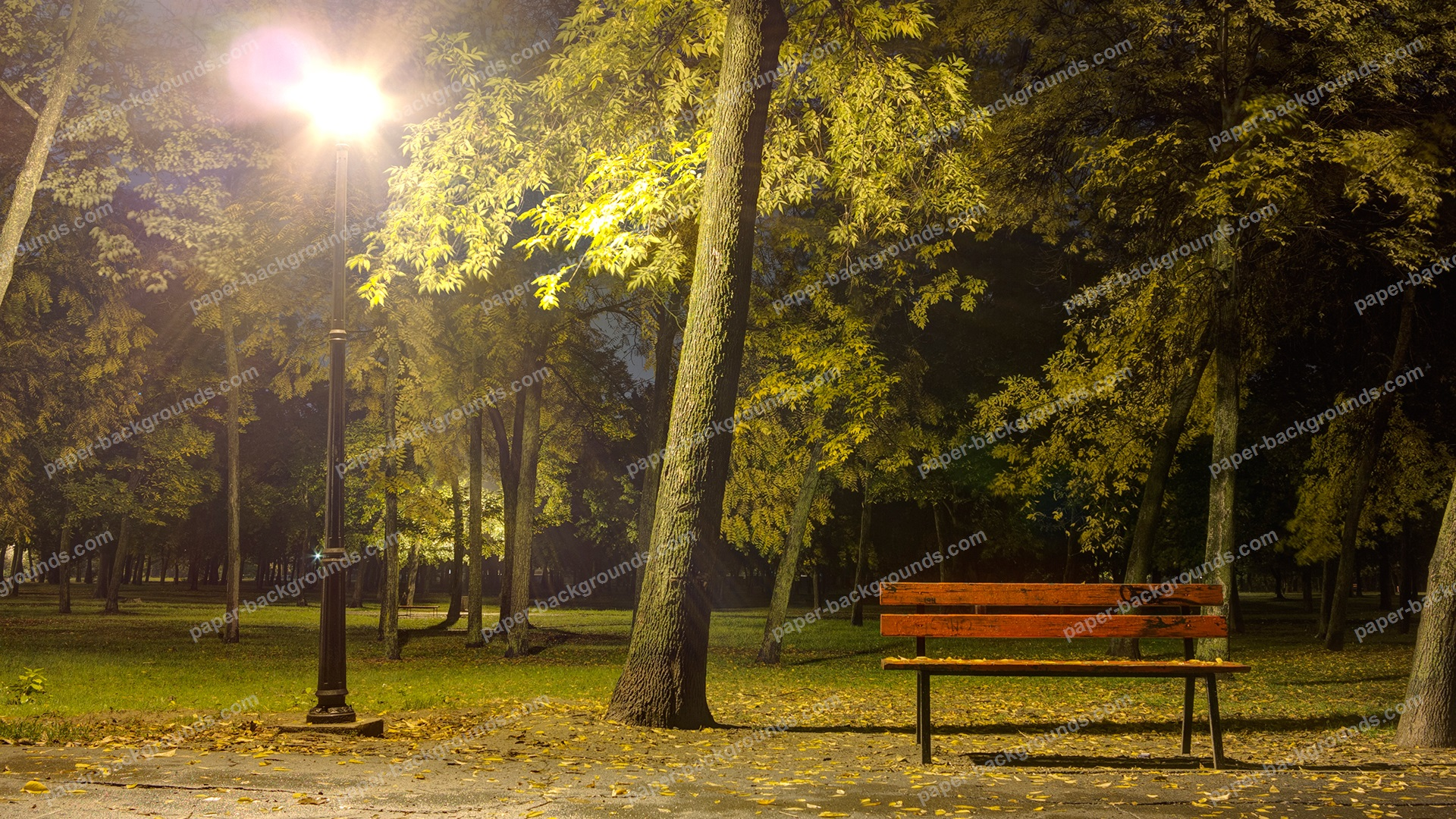 Bench In Park At Night With Light HD 1920 x 1080p