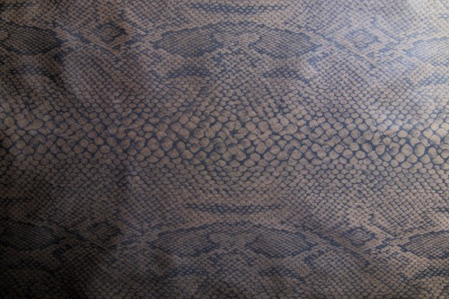 Brown Fabric With Reptile Pattern, High Resolution