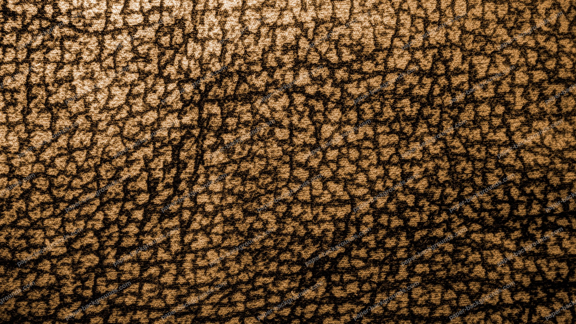 Brown Leopard Pattern Carpet HD 1920 x 1080p