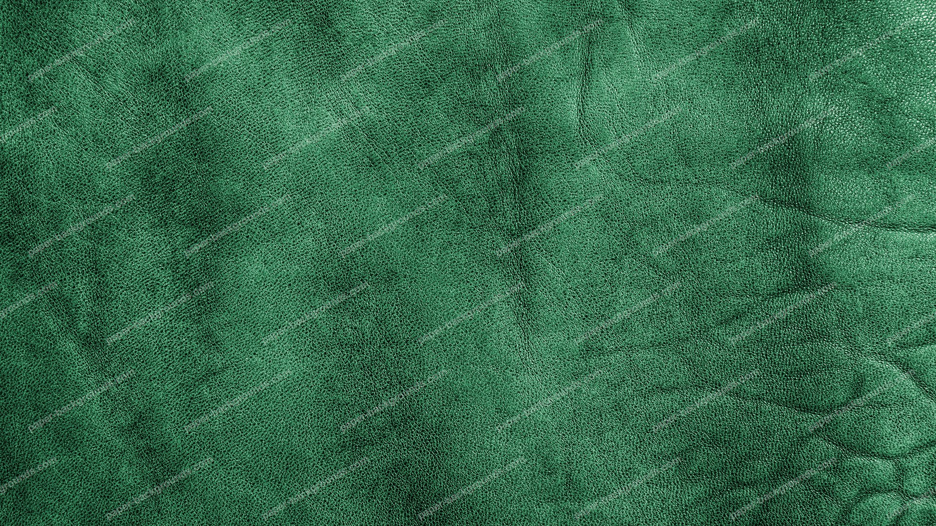 Paper Backgrounds Alligator Royalty Free Hd Paper