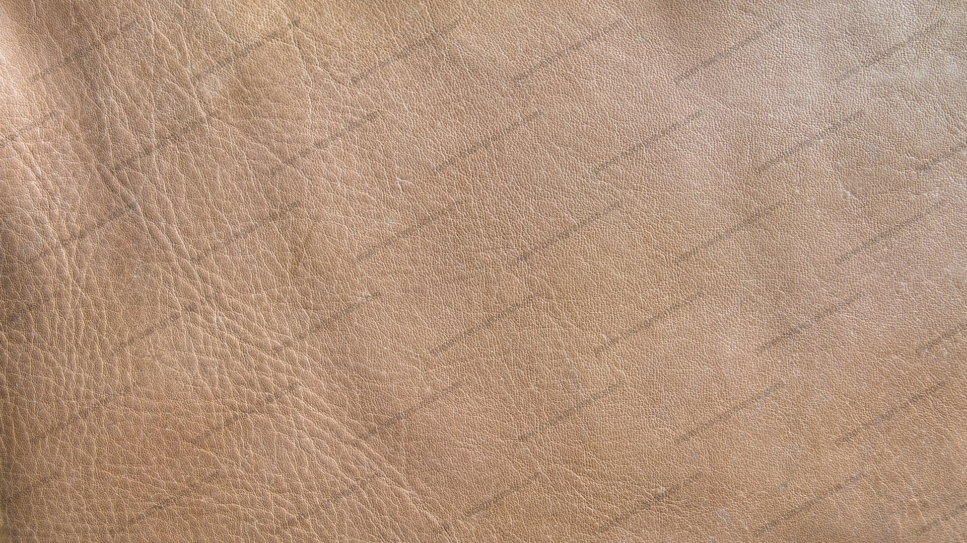 Light Brown Leather Texture HD 1920 x 1080p
