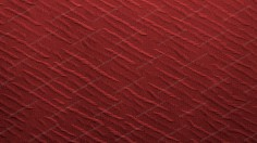 Red Diagonal Decorated Fabric